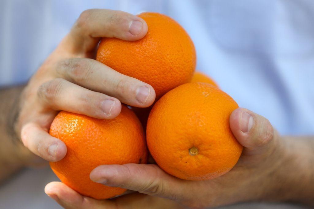 Klementiinejä käsissä